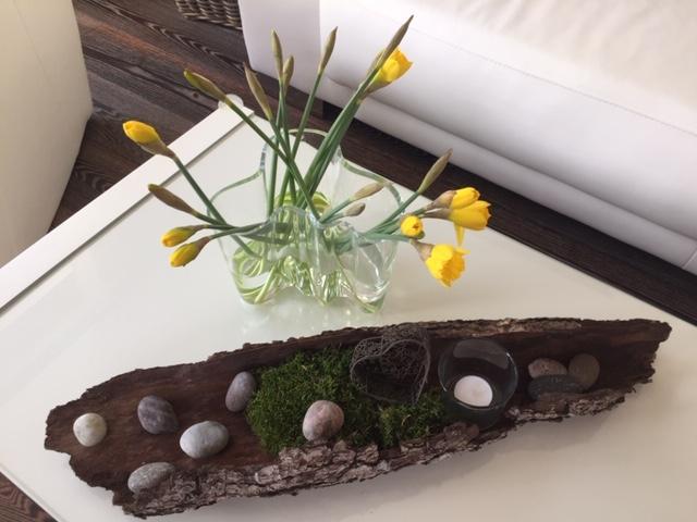Frühlingsdekoration Baumrinde Moos Steine Teelicht